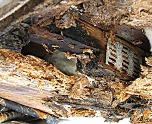 Water damage under the roof of a Recreational Vehicle